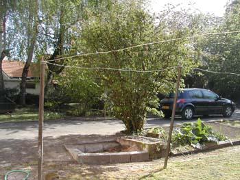 Nettoyage de jardin notre maison chantier jour apr s jour for Nettoyage de jardin
